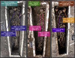 Ancient DNA and kinship analysis of human remains deposited in Merovingian necropolis sarcophagi (Jau Dignac et Loirac, France, 7the8th century AD), janvier 2014