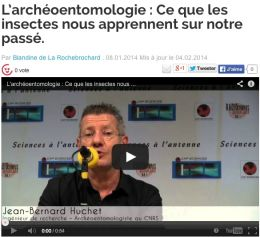 Sciences à l'antenne : l'archéoentomologie - Avril 2014