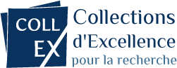 "Les fonds documentaires ""Sciences archéologiques"" de la Bibliothèque Robert Étienne (laboratoire AUSONIUS), viennent d'obtenir le label CollEx, qui distingue des collections d'exception"