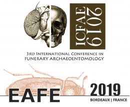 16ème colloque international de l'EAFE / 3ème colloque international de l'ICFAE, 5-8 juin 2019